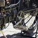 Evolúciós szempontból alig vált el a motor a biciklitől
