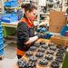 Sok nő dolgozik a KTM-nél