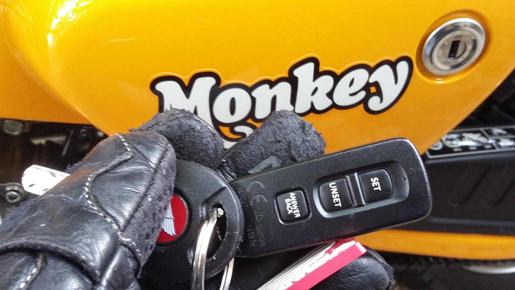 Ilyen volt a Monkey a legismertebb inkarnációjában